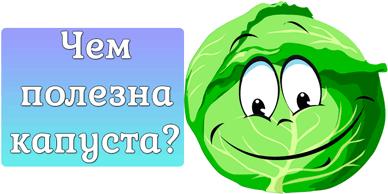 Чем полезна капуста?