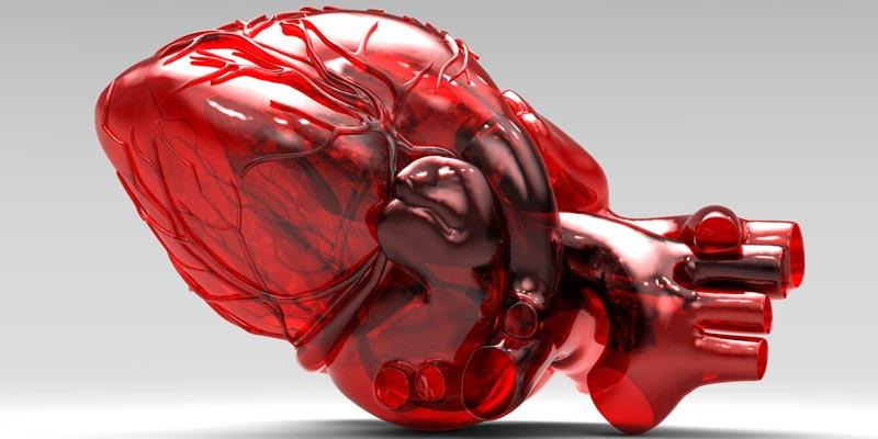 Впервые успешно пересажены ткани, распечатанные на 3D-принтере