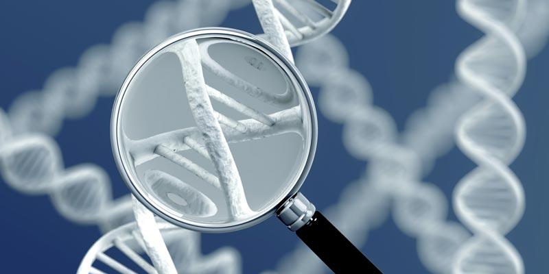 Обнаружены гены, отвечающие за атеросклероз