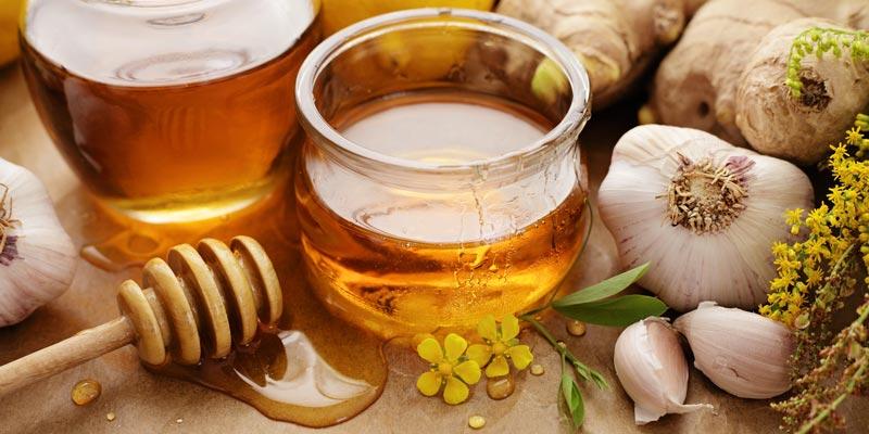 Фотография чеснока с медом