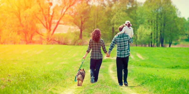 Польза ходьбы: дюжина причин ходить пешком больше