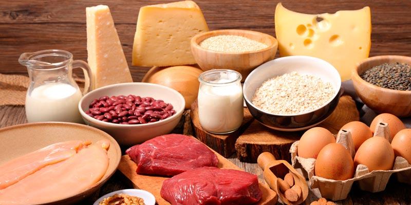 еда, содержащая много белка