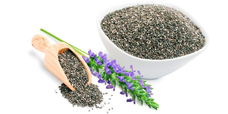 Семена чиа состав