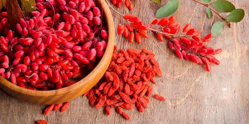 Полезные свойства ягод Годжи — ОБМАН?!