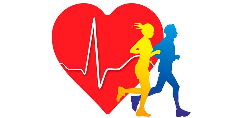 Сколько нужно заниматься спортом для здоровья сердца