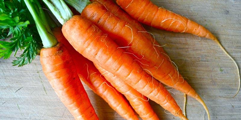 Вред моркови и противопоказания