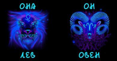 Совместимость женщины лев и мужчины овен